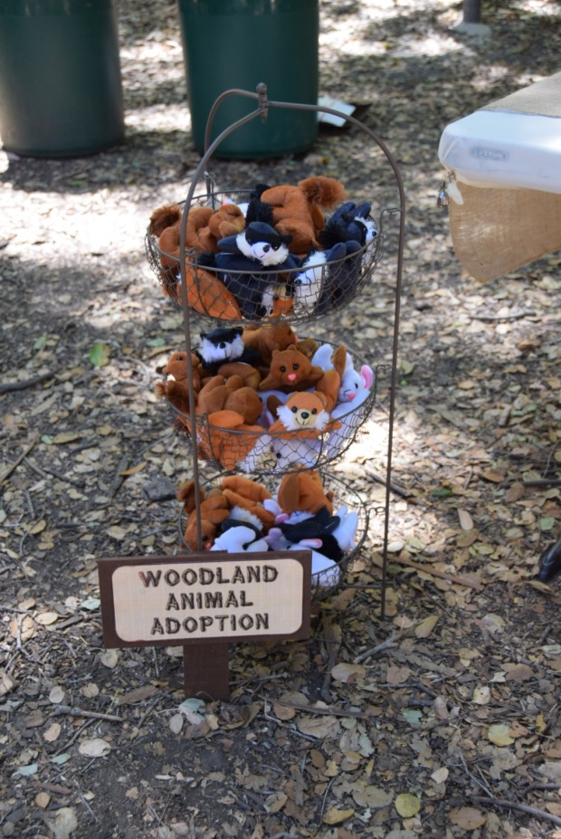 Woodland Animal Adoption